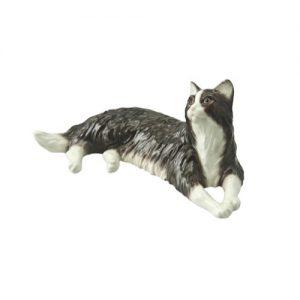 Kattenbeeldjes
